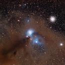 Corona Australis Star Forming Region,                                Wei-Hao Wang