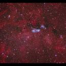 NGC6914 Running Man in Cygnus,                                Göran Nilsson