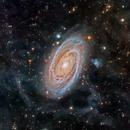 22hr HaLRGB of M81 in Ursa Major,                                jeffweiss9