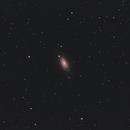 Messier 63,                                Felix