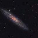NGC 253 Silver Coin Galaxy,                                  Wilson