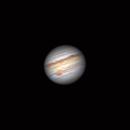 Jupiter & Io's Shadow - Skymax 90,                                Nico Augustin