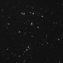 M44 - The Praesepe (Open Cluster),                                Luís Ramalho