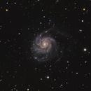 M101 - Pinwheel Galaxy,                                jdifool