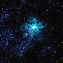 Tarantula Nebula,                                Shane Hunter