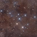 Brocchi's Cluster,                                Thomas LELU
