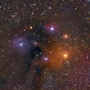 Rho Ophiuchus Molecular Cloud Complex,                                Michael Feigenbaum