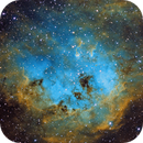 IC410 Tadpole Nebula (2nd try),                                Mathias Radl
