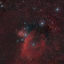 Cinturon de Orion,                                J_Pelaez_aab