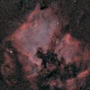 ngc7000(North America and Pelican nebulae) Ha_HOO_RGB,                                *philippe Gilberton