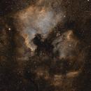 North America and Pelican Nebulae,                                Canrith314