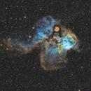 Sh2-311 & ngc 2467- nébuleuse du crâne et des os croisés SHO,                                  astromat89