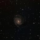 M101,                                antoniogiudici