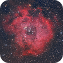 Rosette Nebula (NGC 2237),                                Gabriel Cardona