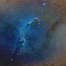 IC 1396, The Elephant Trunk,                                Jeremy Miller