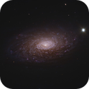 M63 - Sunflower Galaxy,                                Matthew