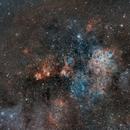 Nebulosa de la Tarántula,                                Rodrigo González...