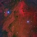 Pelican Nebula in HRGB,                                Cfosterstars