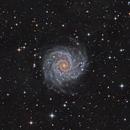 M74,                                KuriousGeorge