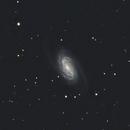 NGC2903,                                Adam Jaffe