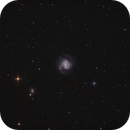 M61,                                Uros Gorjanc