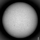 The Sun disk, today, in WL.,                                Gabriel - Uranus7
