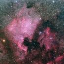 North America and Pelican Nebulae,                                William S Kennedy