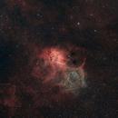 Sh2 132 - Lion Nebula,                                Samuel Khodari