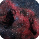 Dark Nebula in the Sagittarius Star Cloud - Ha Lum RGB,                                Terry Robison