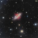 M82 ,                                Francesco Antonucci