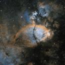 Fishhead Nebula IC 1795 in SHO,                                Nathan Morgan (nm...