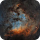 Candles in the Dark : NGC 7822 in SHO with RGB stars,                                Bogdan Borz