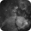 IC 1795 - The Fishhead Nebula - Ha,                    Thomas Richter