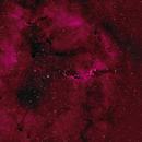 IC1396 - Elephant Trunk Nebula,                                equinoxx
