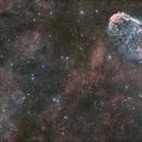 Crescent nebula and Soap bubble,                                PiPais