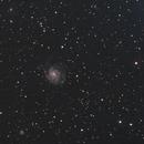 M101 with Samyang 135,                                  netspoon