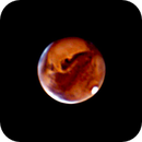 Mars Experiment,                                Tam Rich