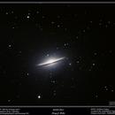 M104 - Sombrero Galaxy,                                Terry Belia