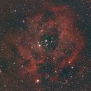 NGC2244,                                Mike