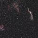 Zirrusnebelkomplex im Sternbild Schwan (Cygnus) - nochmals gecropped,                                astrobrandy