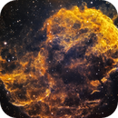 Jellyfish Nebula - IC 443 - in Narrowband,                                Chuck's Astrophot...