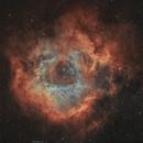 Rosette Nebula or Caldwell 49,                                John