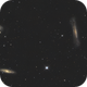 Leo Triplet, the result of a collaboration,                                RononDex