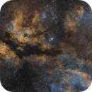 The Gama Cygni Nebula in the Hubble Palette,                                  Alex Roberts