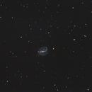 NGC 7479,                                Mark Sansom