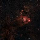 IC1795 - Fishhead Nebula,                                normmalin