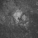 North American and Pelican Nebulae in Ha,                                llolson1