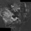 NGC7000 Mosaic,                                Phil Wright