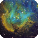 IC2944 Running Chicken Nebula or the Lambda Cen Nebula,                                Gerson Pinto