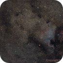 NGC7000 and IC5070 - North America and Pelican Nebula,                                Miroslav Horvat